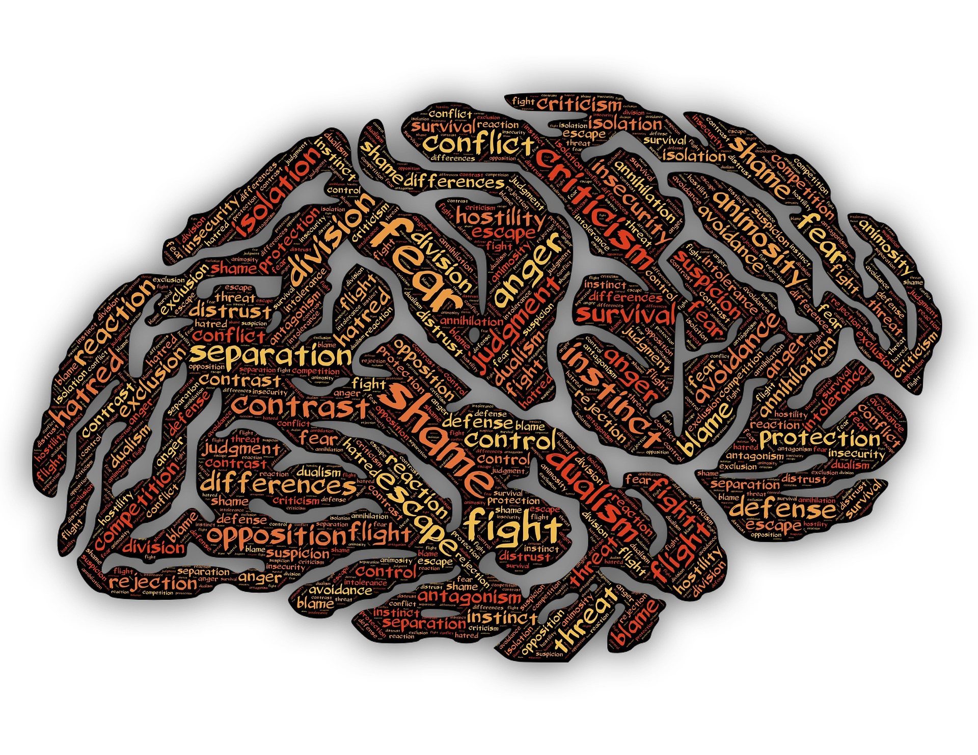 [Image: illustration of a brain on a white background that is coloured in brown and has words in yellow, orange, and red that read things like: fear, anger, shame, fight, escape, threat, opposition, conflict, criticism, etc.].