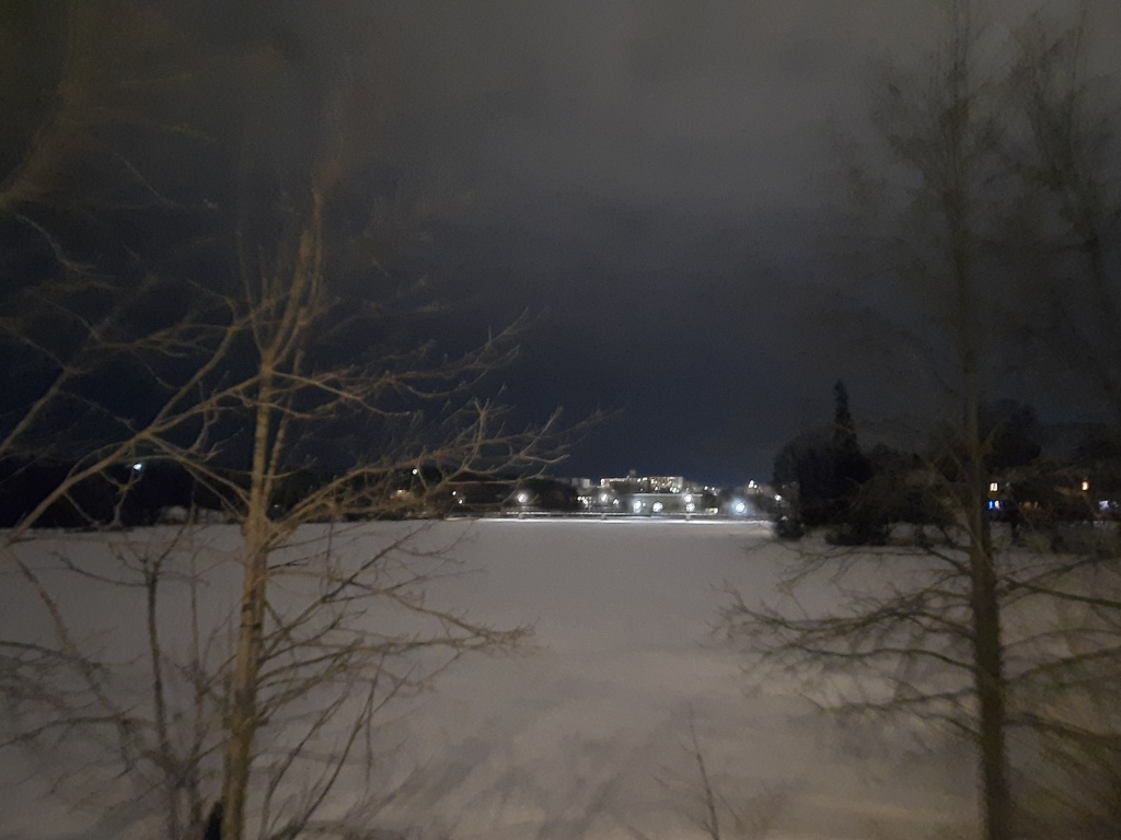 Slightly blurry photo taken at night of bare trees, snow covering a lake, a dark and cloudy sky, and some buildings in the background with several lights on.