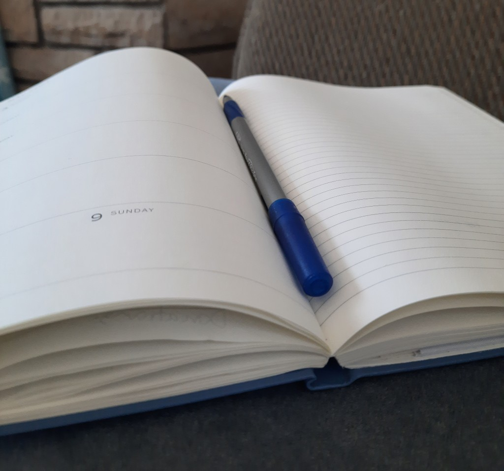 "Close up of an open notebook sitting on a couch with a blue-and-grey pen in the middle. The page on the left contains mostly empty boxes, one of which reads, ""9 SUNDAY"" and the page on the right is empty and lined."